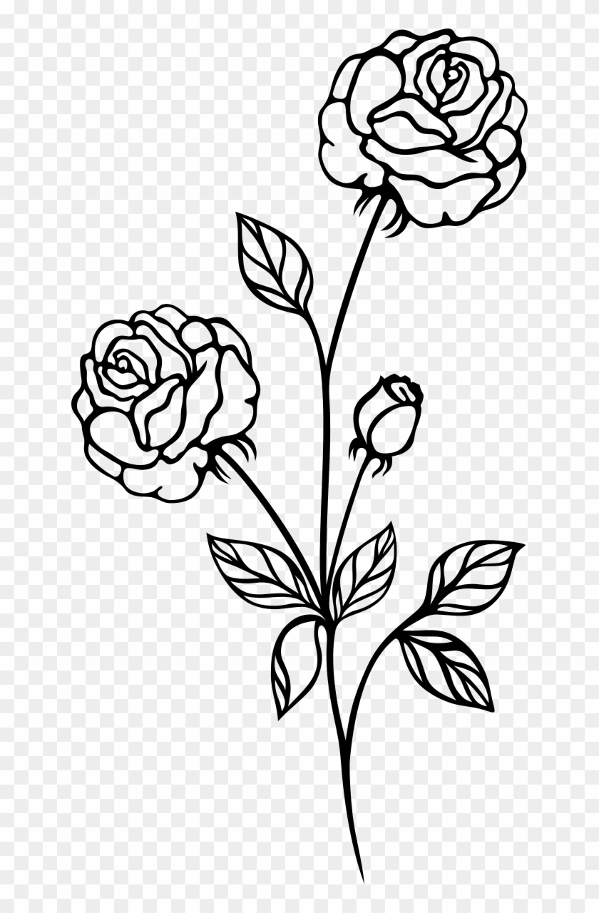 Rose Flower Png Black And White Transparent Images 3731 Pngio