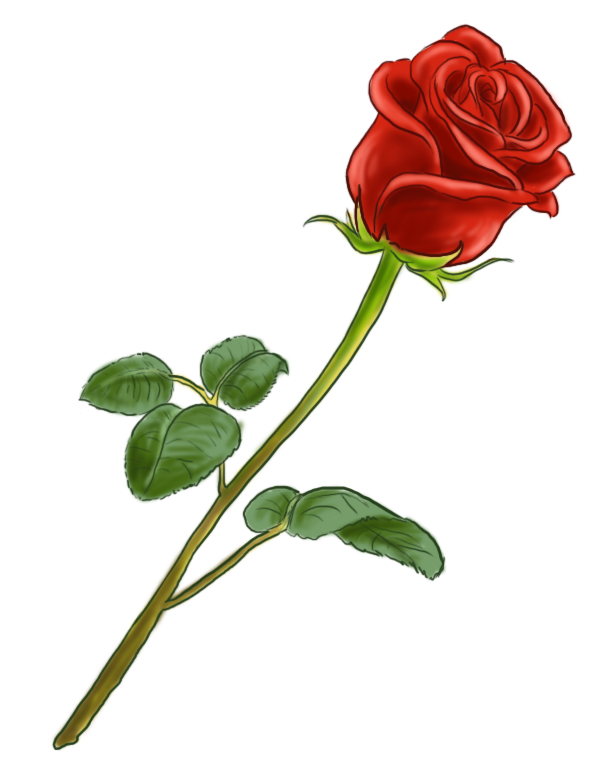 Image D Une Rose Rouge png rose rouge & transparent images #3937 - pngio