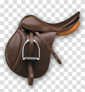Saddle Dressage Fairfax Breastplate Girt 1279954 Png Images Pngio
