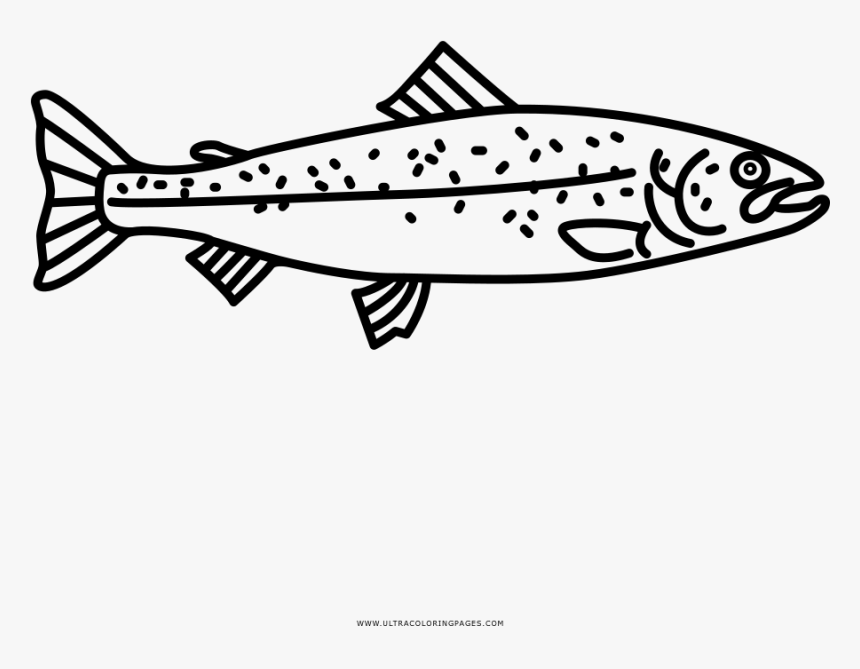 mike trout logo coloring pages   Trout Coloring Pages Png & Free Trout Coloring Pages.png ...