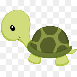 20+ Turtle Cartoon Png  Wallpapers