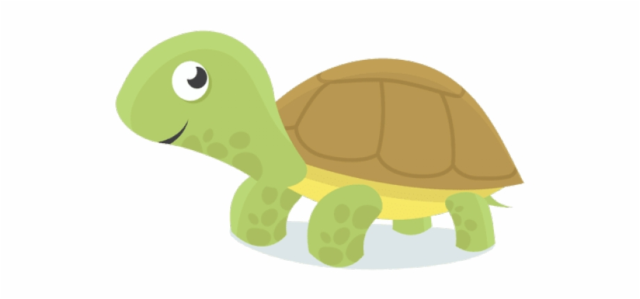 Baby Turtle Png Free Baby Turtle Png Transparent Images 52692