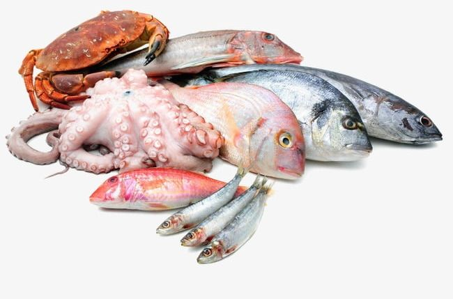 Fish And Seafood Png - Seafood PNG, Clipart, Chilled, Fish, Fresh, Seafood, Seafood ...