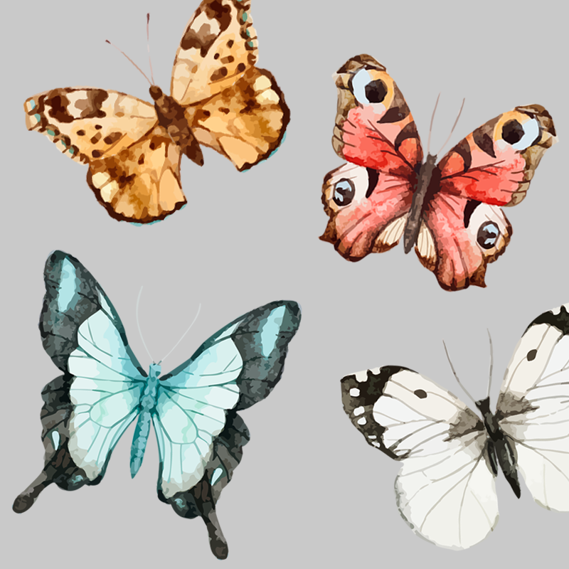 Free Butterfly Png For Commerical Use - Set of 6 Free Butterfly Clipart-CU ok | Printables | Pinterest ...