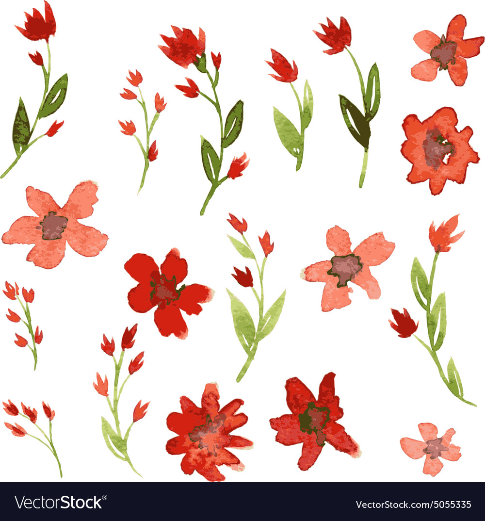 Red Flower Drawing - Set of watercolor drawing red flowers Royalty Free Vector