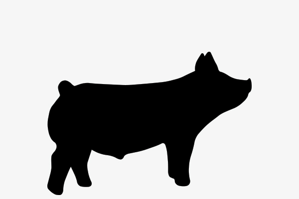 Show Pig Png Free Show Pig Png Transparent Images 93442 Pngio Download 8,600+ royalty free pig silhouette vector images. show pig png free show pig png transparent images 93442 pngio