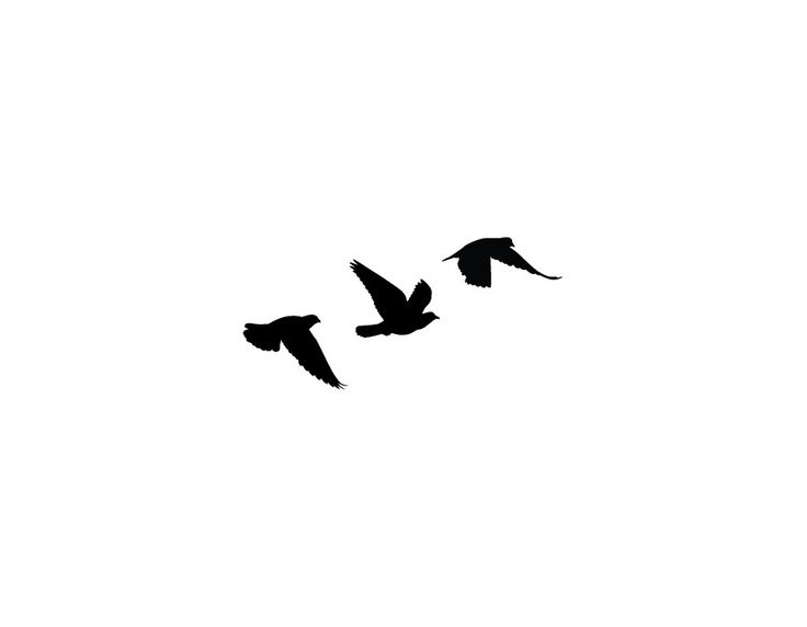 Hummingbird Tattoos Png - Silhouette Three Flying Birds Tattoo Stencil