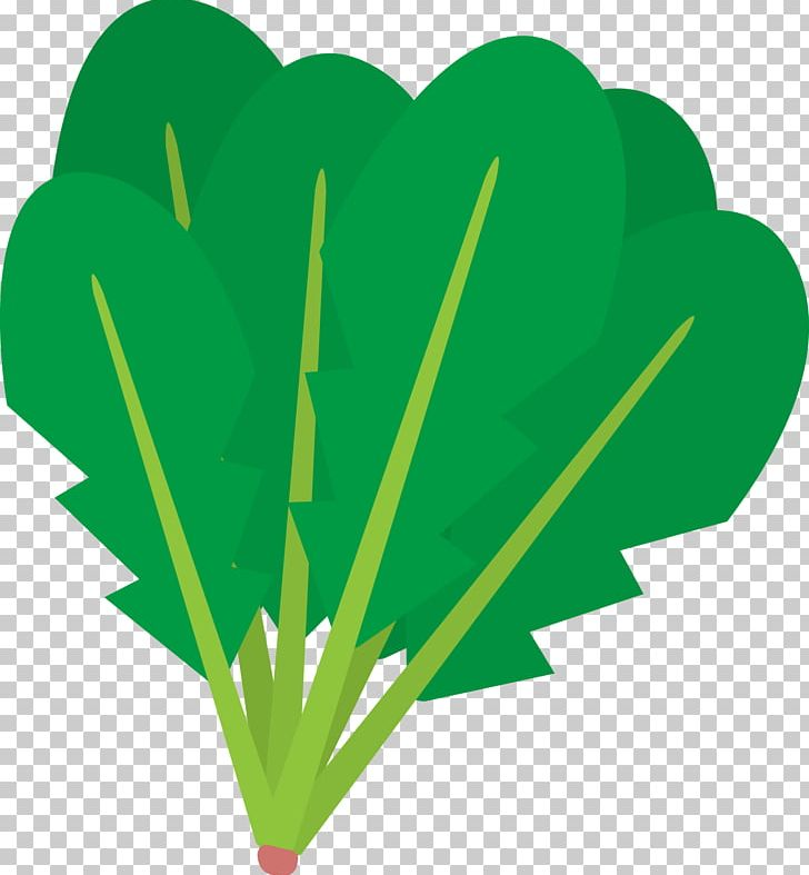 Food Png Spinach - Silhouette Vegetable Spinach Food PNG, Clipart, Amaranth, Animals ...