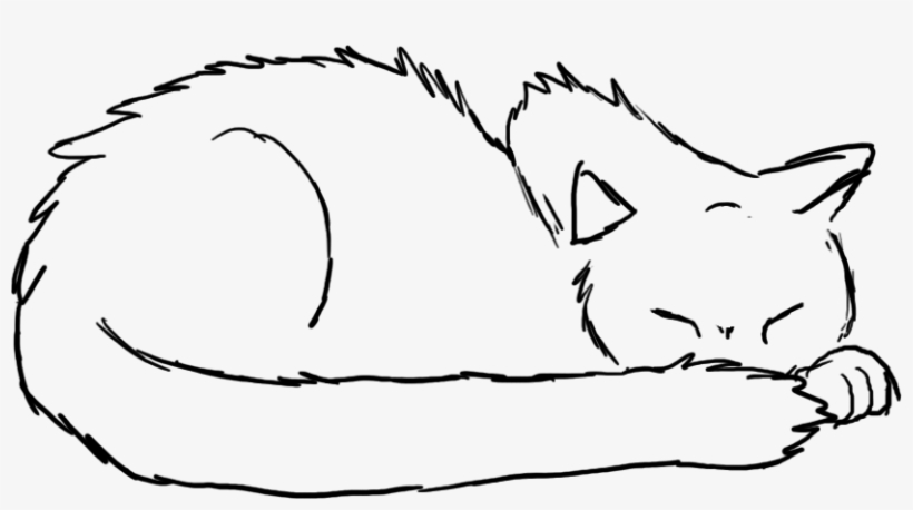Sleeping Cat Drawing Drawings Of Cats 1556218 Png Images Pngio