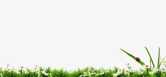 Background Spring Png - Spring Background, Spring, Grass, Flower #254186 - PNG Images - PNGio