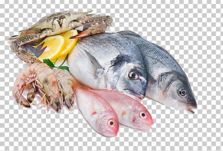 Fish And Seafood Png - Squid As Food Fish Seafood Meat PNG, Clipart, Animals, Animal ...