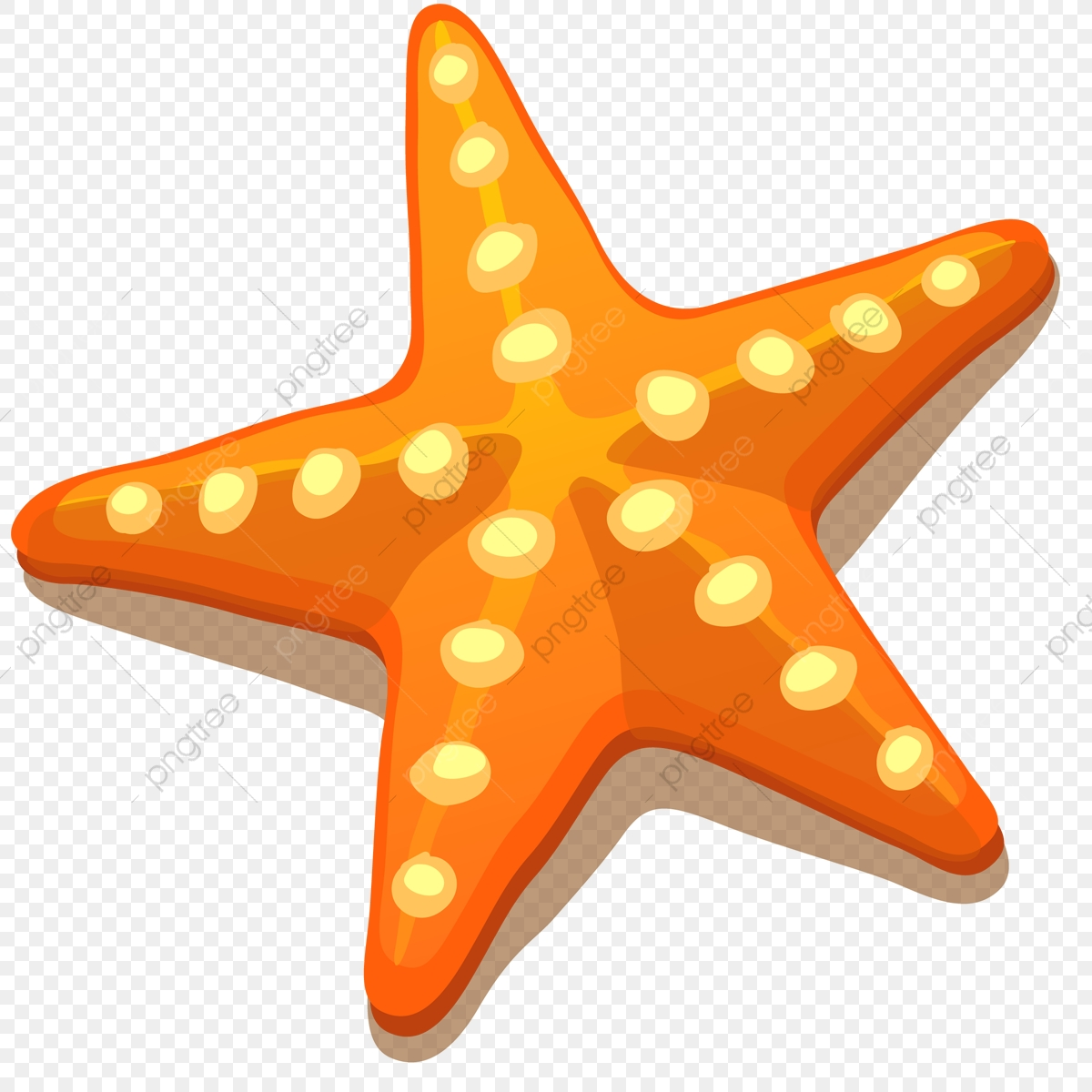 Starfish.png - Starfish, Png, Nature PNG and Vector with Transparent Background ...