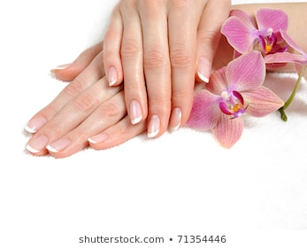 Long French Manicure Png - Stock Photo and Image Portfolio by Smart-foto | Shutterstock