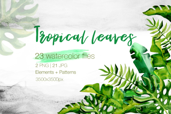 Tropical Plant 21 Png - Succulent Tropical leaves PNG watercolor set Graphic by MyStocks ...