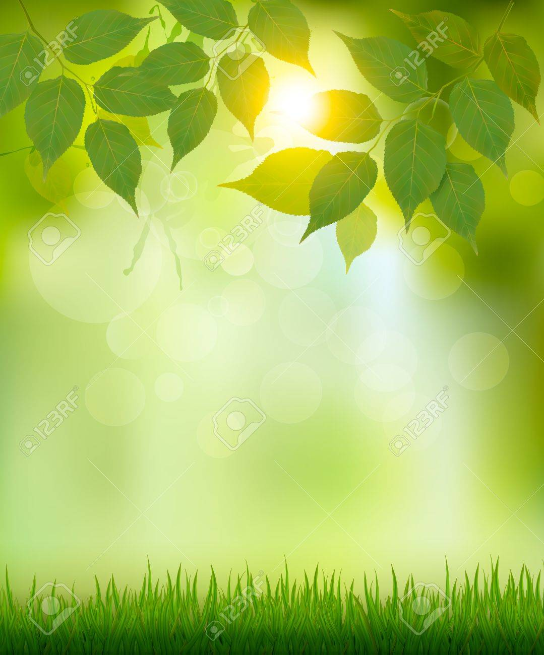 Nature Background - Summer Nature Background With Green Leaves. Vector. Royalty Free ...
