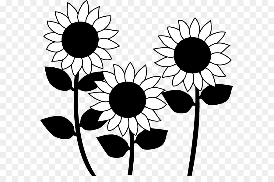 Sunflower Black And White Png - Sunflower Black And White