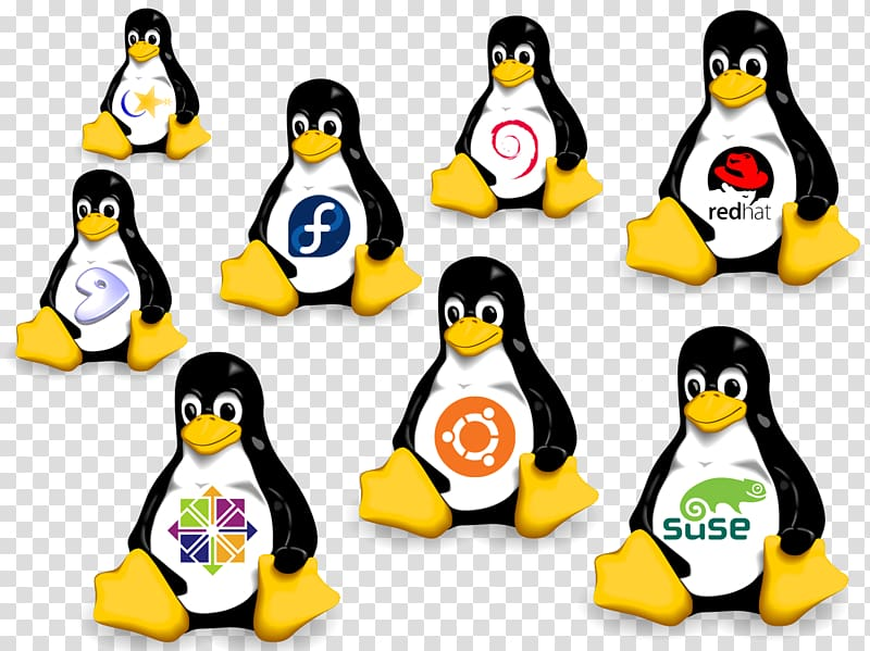 Suse Linux Distributions Png - SUSE Linux distributions Operating Systems Ubuntu, linux ...