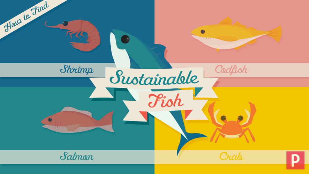 Sustainable Fishery Png - Sustainable Fish — Dennis Fries - The Elephant Den
