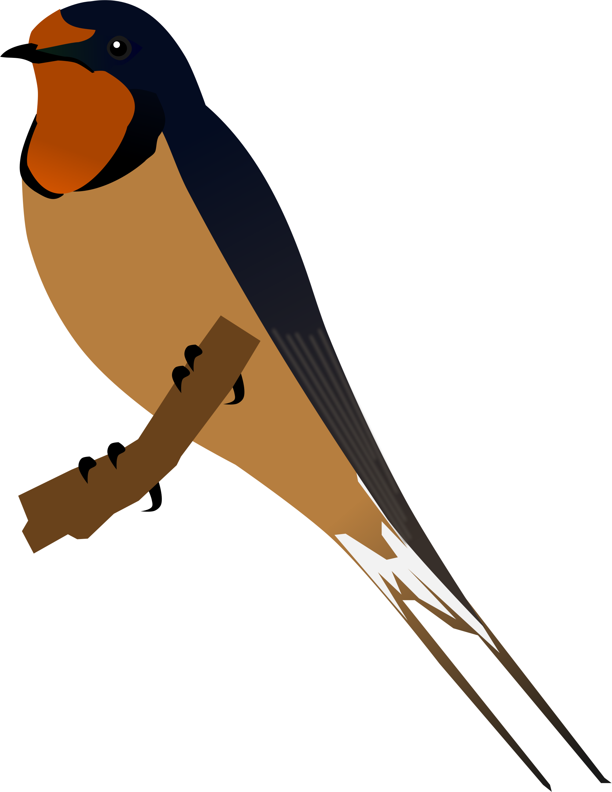 Barn Swallow Png - Swallow PNG