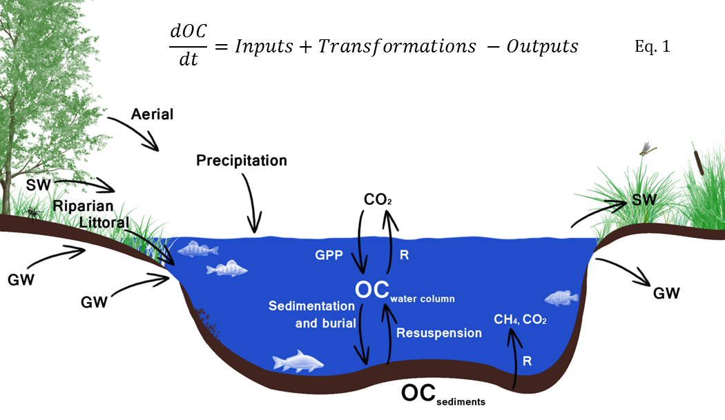 Conceptual Model Png - Talk:Conceptual model for lake OC cycling - Age of Water