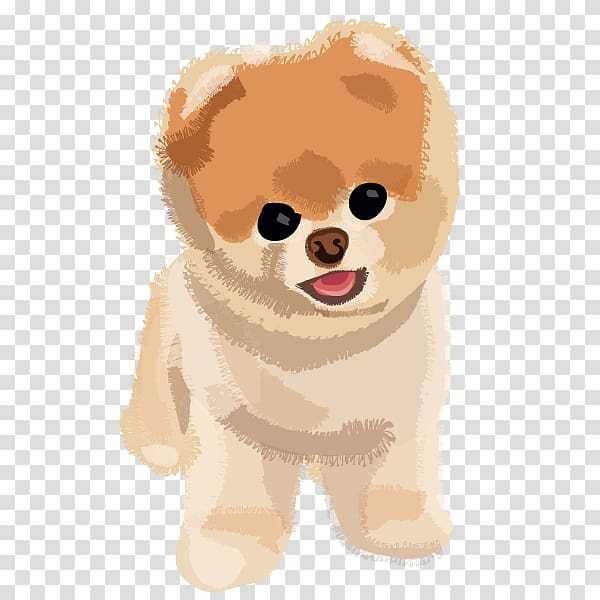 Boo The Dog Png - Tan Pomeranian puppy illustration, Pomeranian Puppy Boo, Boo Dog ...
