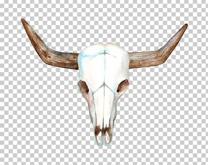 Texas Longhorn Cows Skull Red Png Clip 1574041 Png Images Pngio