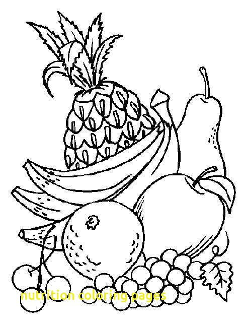The Best Free Nutrition Drawing Images 1996720 Png Images Pngio