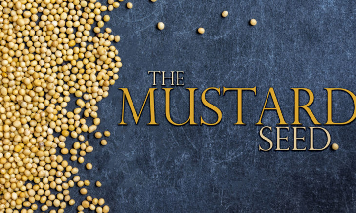 Mustard Seed Parable Png - The Cove Community: The Parables of Jesus - The Mustard Seed (Mark ...