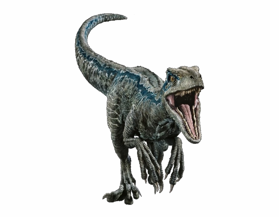 Jurassic World Velociraptor Png Free Jurassic World Velociraptor Png Transparent Images 61965 Pngio Polish your personal project or design with these jurassic world transparent png images, make it even more personalized and more attractive. jurassic world velociraptor png free