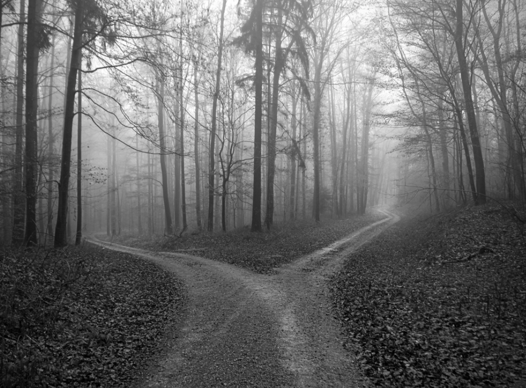 Road Diverging Image Black And White Png - The Road Less Travelled By: Building the Right Way With EAPAP ...