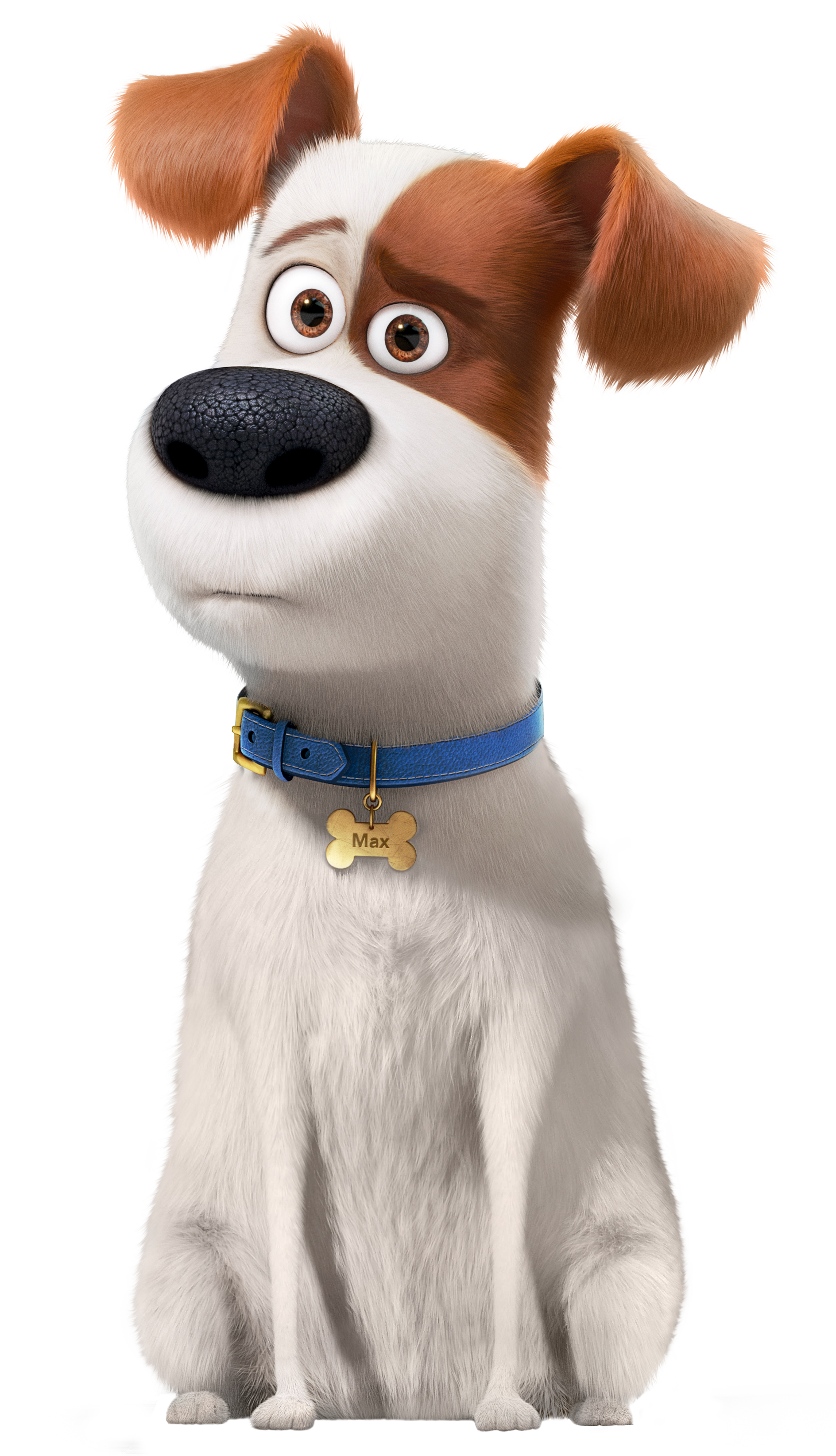 Secret Life Of Pets Clipart - The Secret Life of Pets Max Transparent PNG Image​ | Gallery ...
