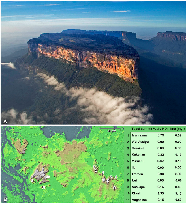 Mount Roraima Png - The tepui ecosystems. (A) Mount Roraima, an emblematic tepui. (B ...