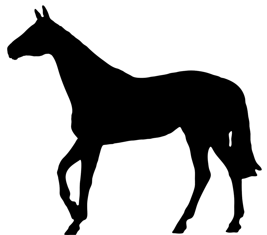 Pony Silhouette Png - Thoroughbred Pony Silhouette Horse racing - horseshoe png download ...