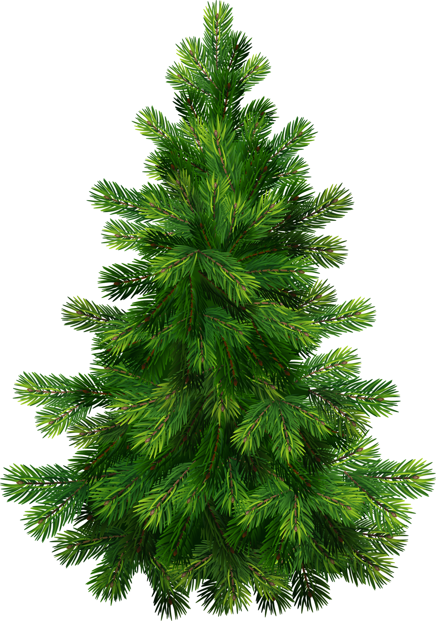Transparent Pine Tree - Transparent Pine Tree PNG Clipart | Gallery Yopriceville - High ...