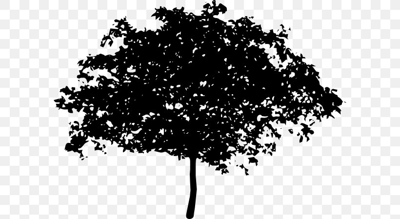 Electric Arches Png - Tree Oak Branch Clip Art, PNG, 600x449px, Tree, Black And White ...