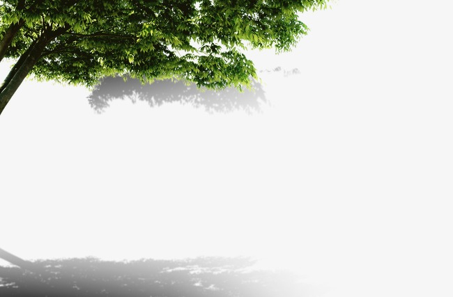 Tree Shade Png - Tree, Trees, Shade PNG and PSD File for Free Download