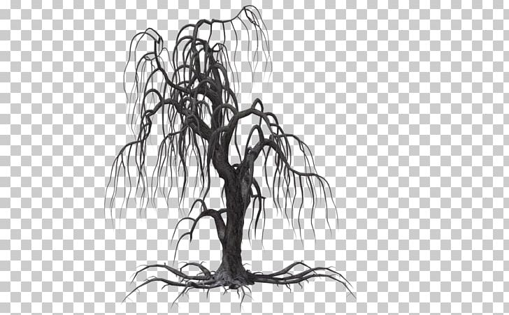 Weeping Willow Tree Black And White Png - Tree Weeping Willow Drawing PNG, Clipart, Artwork, Black And White ...