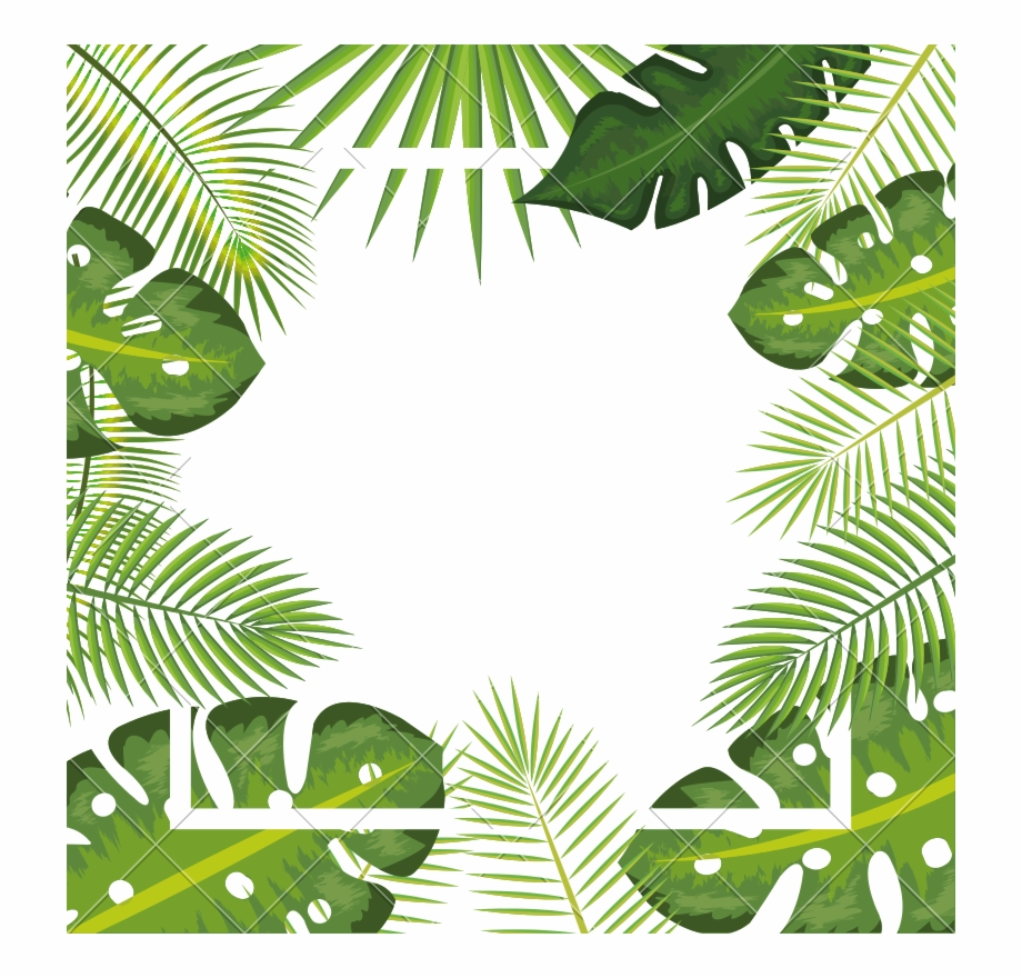 Tropical Background Png - Tropical Background Png - Leaves Palm Png Background {#1133465 ...