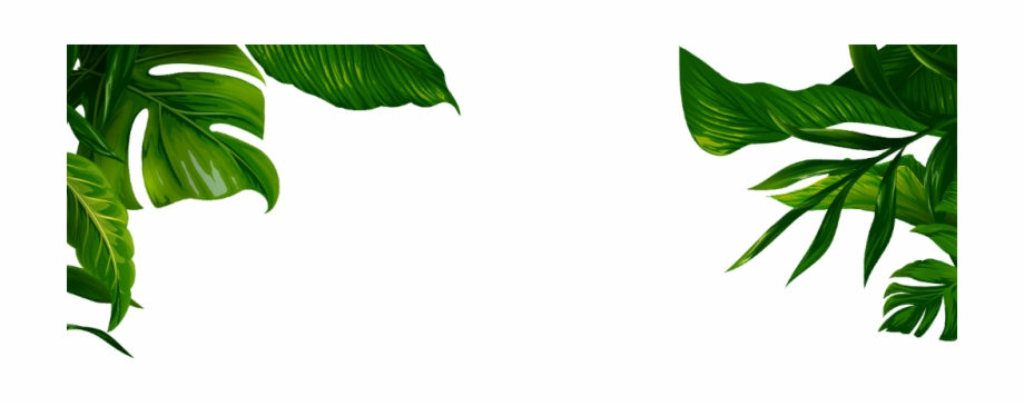 Tropical Jungle Leaves Ftestickers 1177347 Png Images Pngio 51 transparent png illustrations and cipart matching tropical leaves. tropical jungle leaves ftestickers