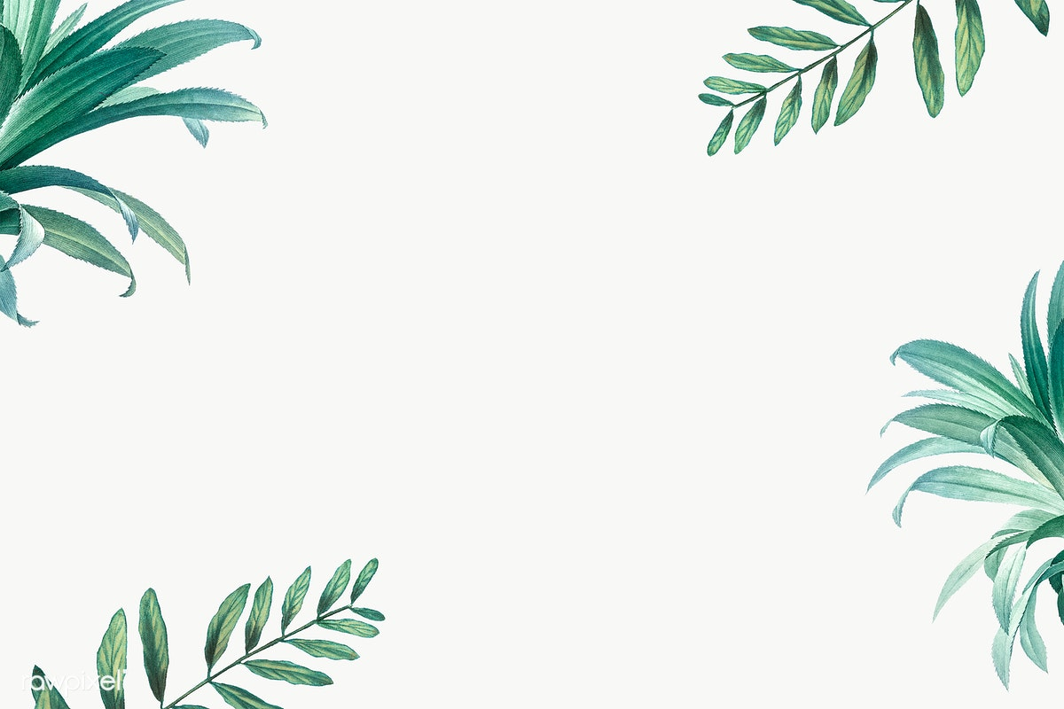 Tropical Leaves Frame Free Stock Illus 1112423 Png Images Pngio Nature tropical leaves leaves tropical tropical nature leaves nature decoration natural leaf decorative background plant ornament symbol decor template element backdrop ornate ornamental colorful artistic emblem floral classic green bright sketch modern icon flower classical retro beautiful elegant color. tropical leaves frame free stock