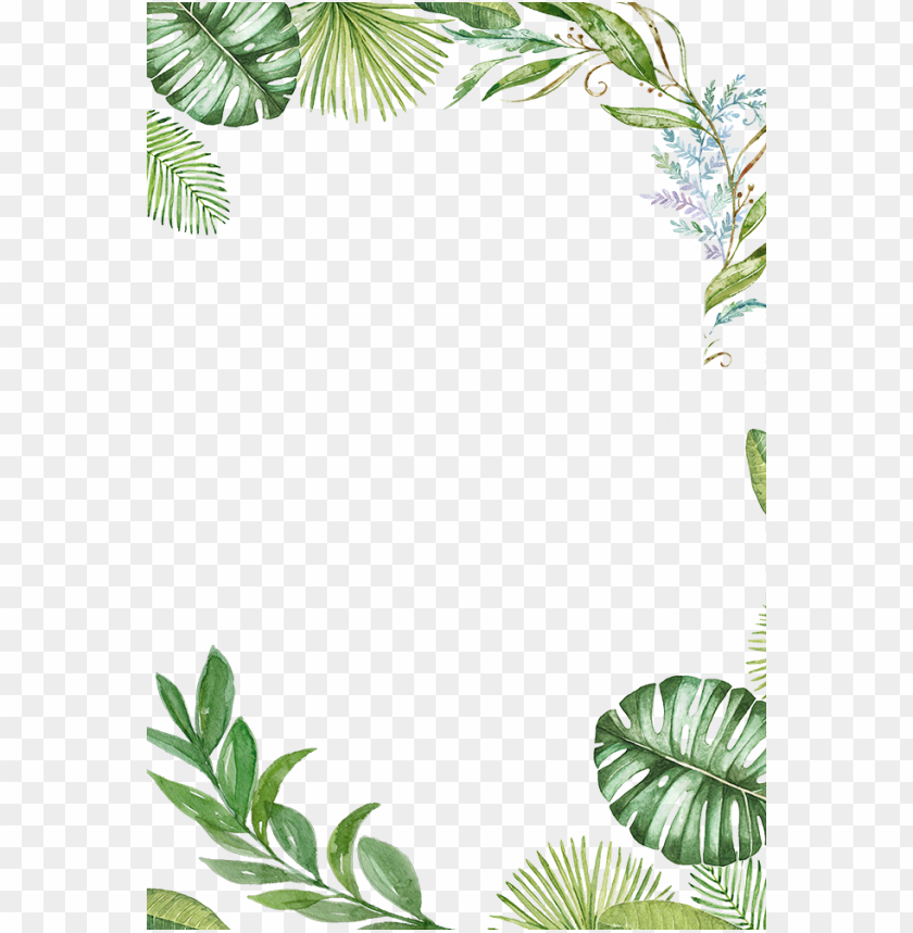 Tropical Background Png - tropical leaves frame PNG image with transparent background | TOPpng