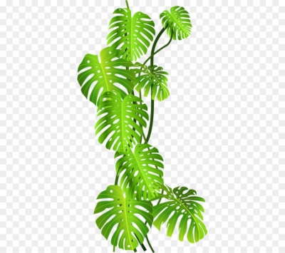 Jungle Leaves Png Free Jungle Leaves Png Transparent Images 66058 Pngio 51 transparent png illustrations and cipart matching tropical leaves. jungle leaves png transparent