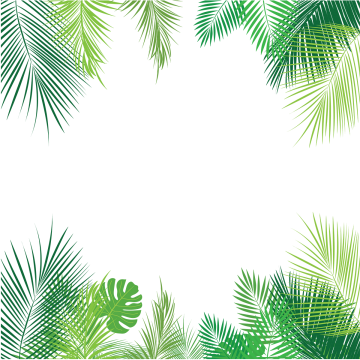 Png Leaf - Tropical Leaves PNG Images | Vectors and PSD Files | Free Download ...