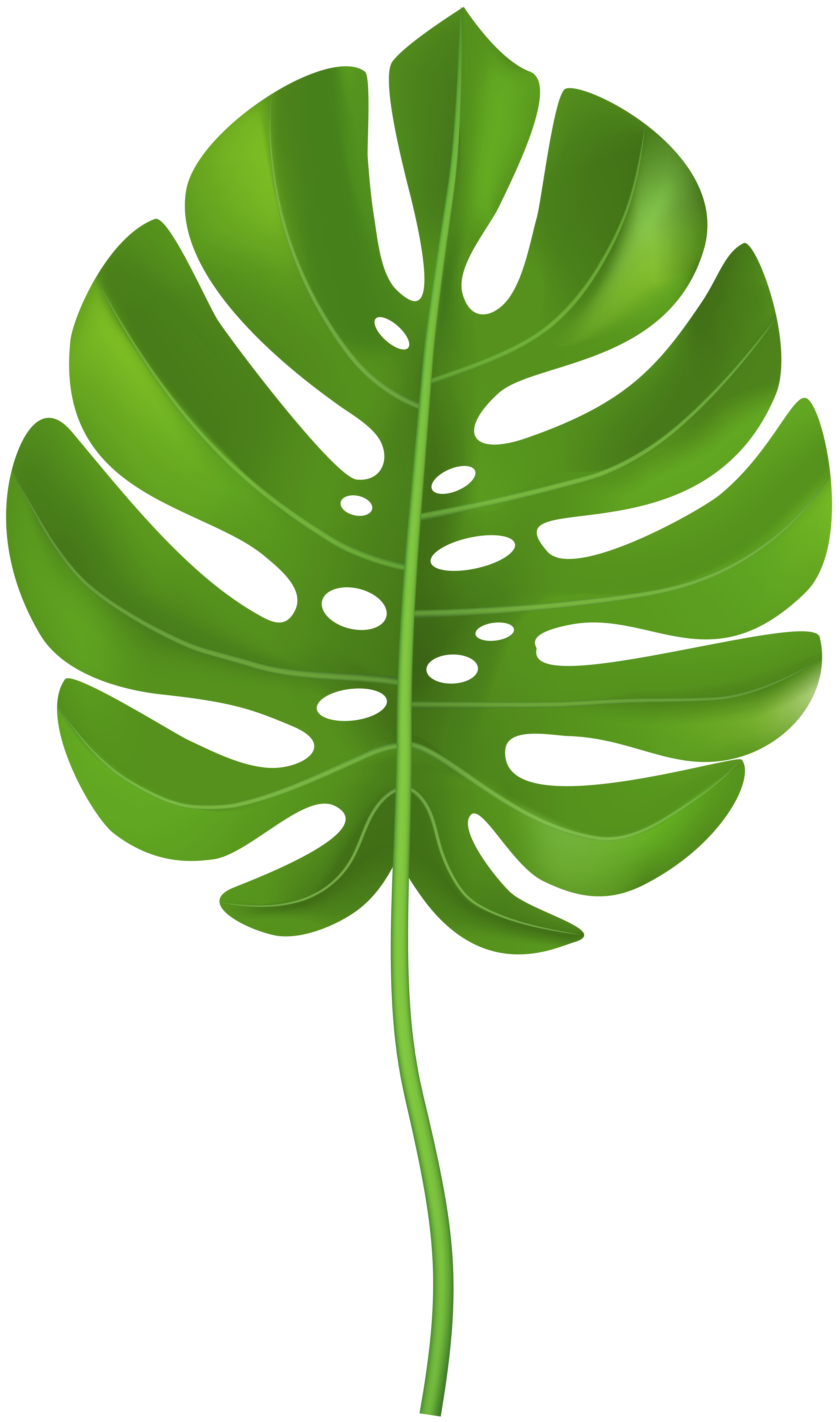 Tropical Leaves Png - Tropical Palm Leaf Transparent PNG Clip Art Image   Gallery ...