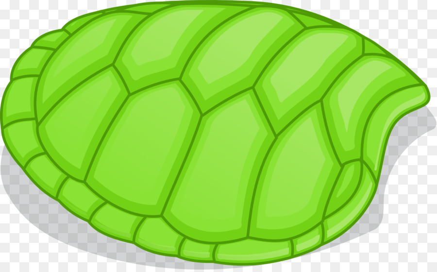 Tortoise Shell Png - Turtle Shell PNG HD Transparent Turtle Shell HD.PNG Images. | PlusPNG