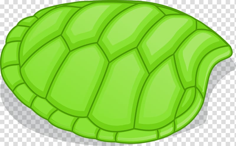 Tortoise Shell Png - Turtle Shell transparent background PNG cliparts free download ...