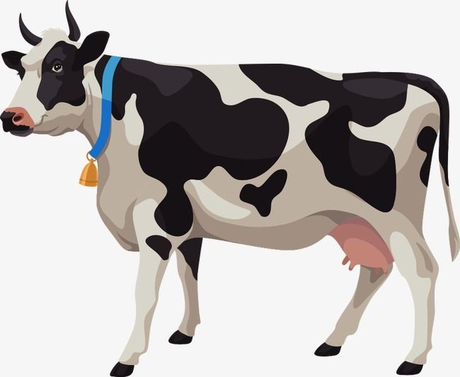 Vector Animals Png - Vector Cartoon Cows, Cartoon Clipart, Dairy Cow, Cattle PNG and ...