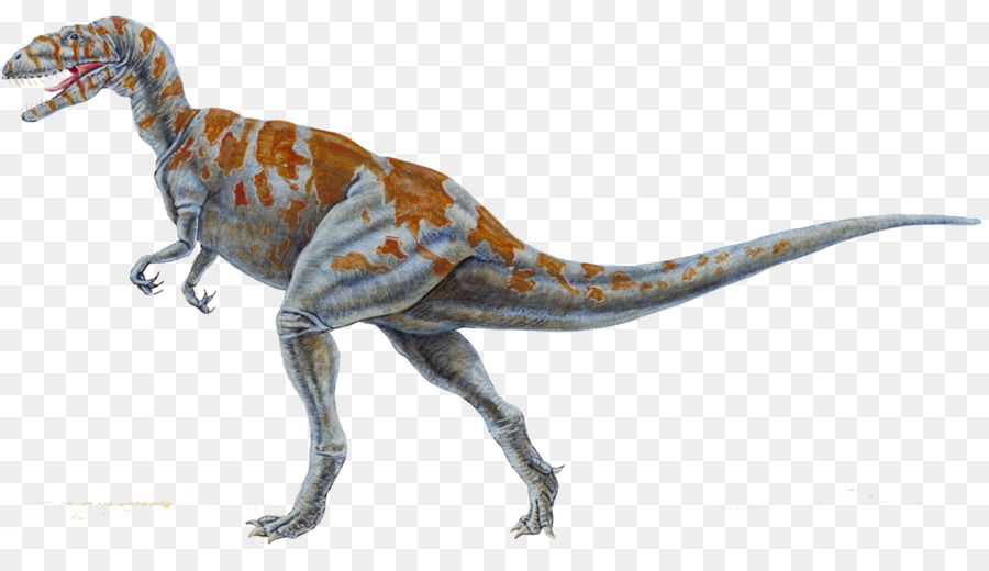 Coelurosauria Png - Velociraptor Background png download - 2800*1564 - Free ...