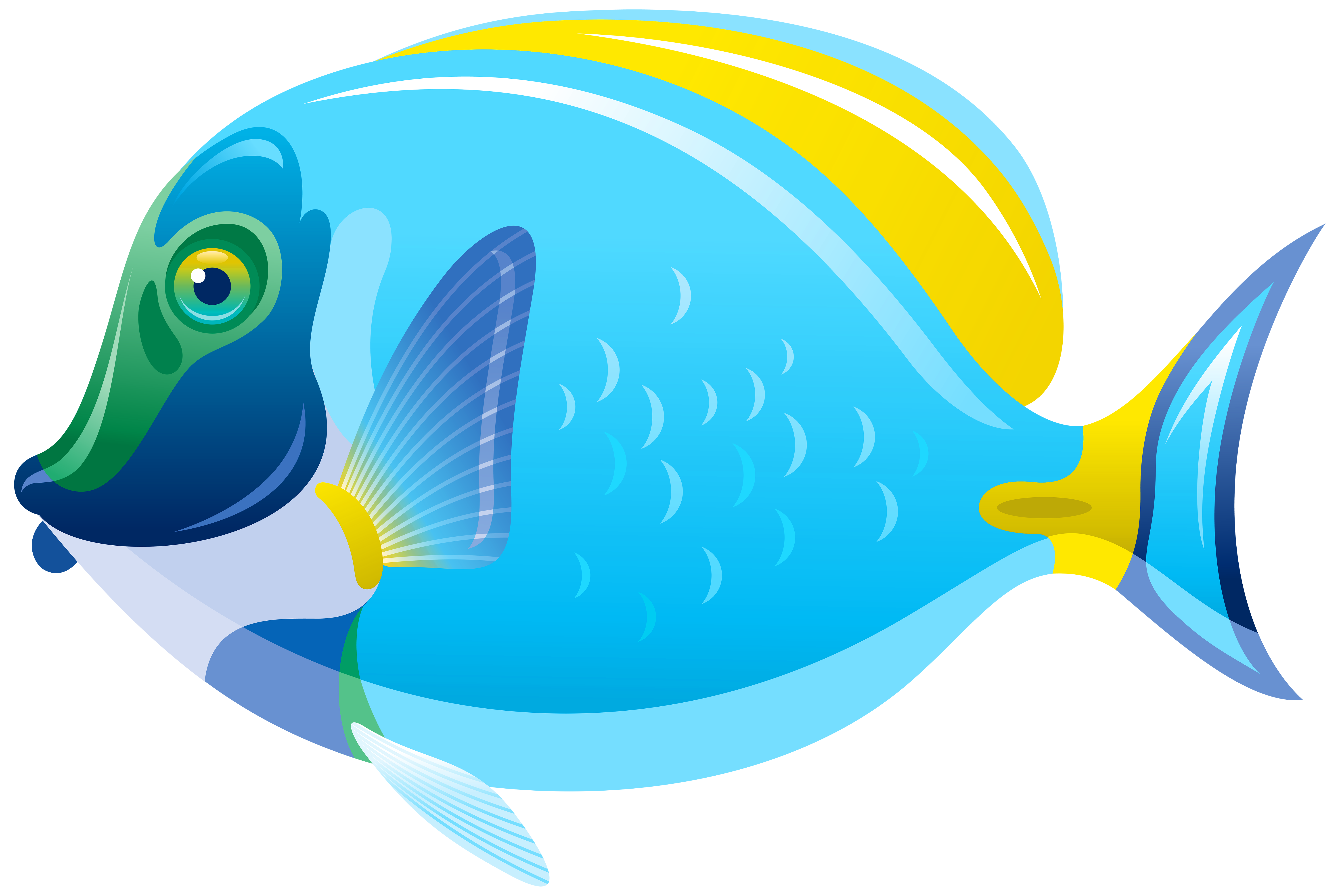 Fish Png - View full size ?
