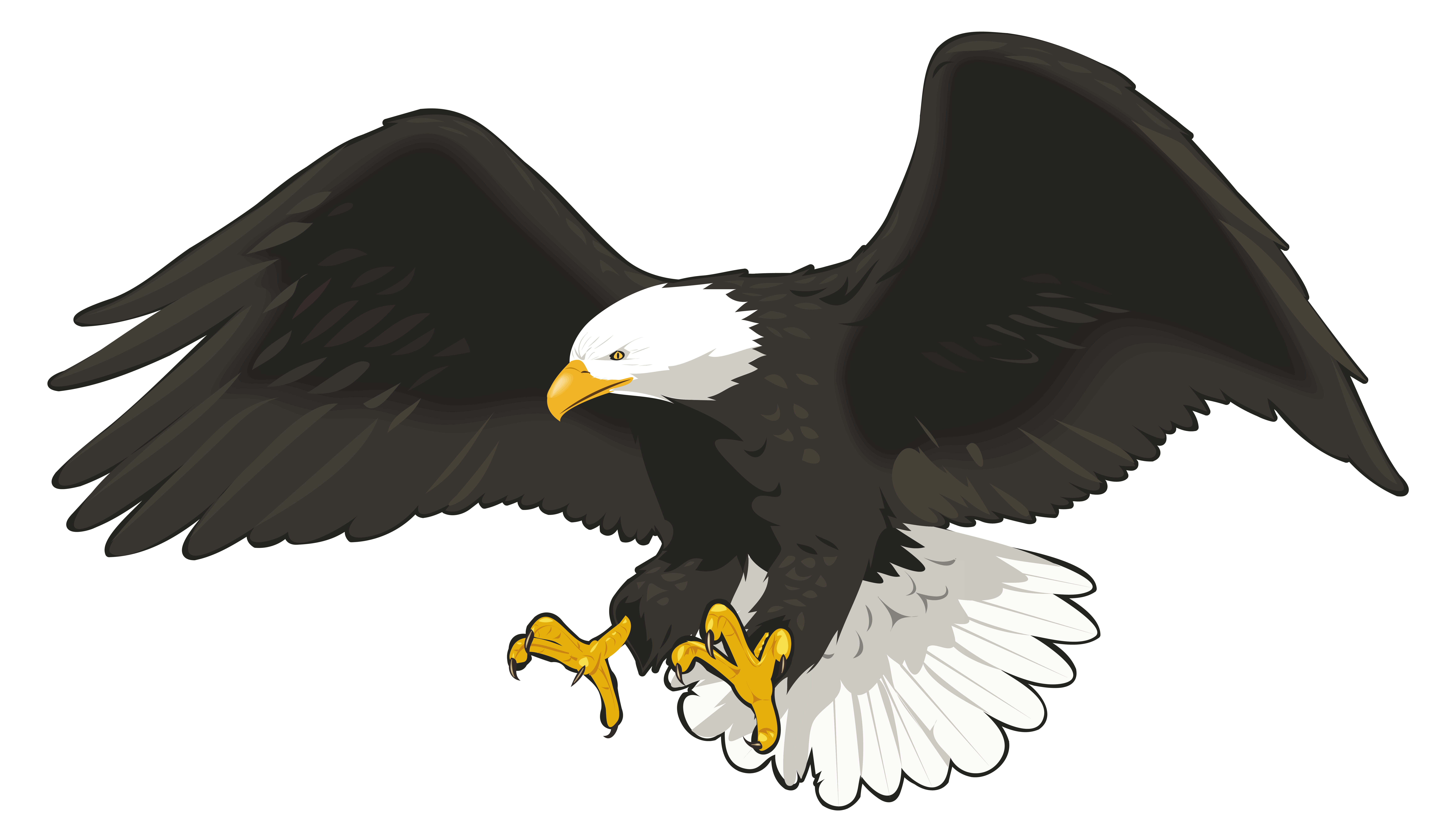 Picture Of Eagle Png - View full size ?